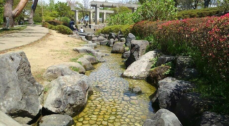 1.開成山公園 画像2